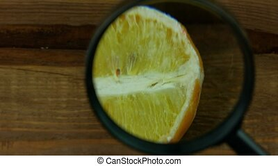 Ugly food trend. Spoiled yellow lemon half with red mold close up on wooden background. Moldy citrus penicillin unhealthy inedible fruit. Dangerous toxic harmful product, laboratory scientist research
