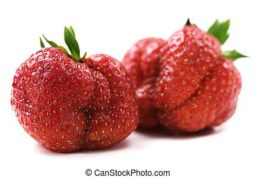 Ugly organic heirloom home grown strawberries isolated...