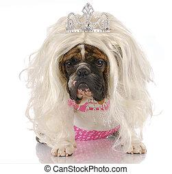 ugly princess - english bulldog dressed up like girl with...