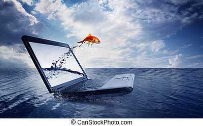 ugrás, aranyhal, ki, monitor, óceán