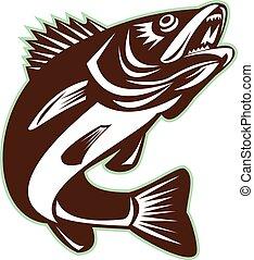ugrás, retro, fish, elszigetelt, szaruhártyafolt
