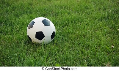 Soccer ball on the field with natural grass.
