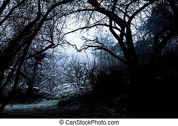 uhyggelige, sti, ind, tåge