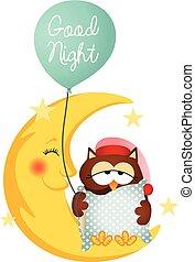 uil, balloon, goed, vasthouden, nacht