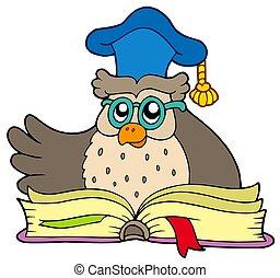 uil, boek, spotprent, leraar