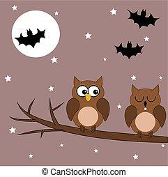 uil, halloween, tak, nacht