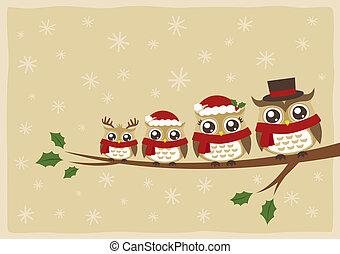 uil, kerstmis, gezin, groet