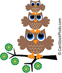 uilen, drie, bruine