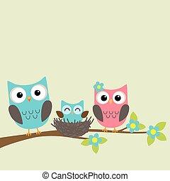uilen, gezin