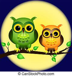 uilen, op, tak, met, volle maan