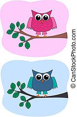 uilen, twee