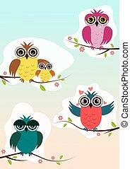uilen, zittende , op, een, lente, tak