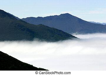 uit, van, de, mist