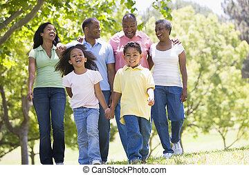uitgebreide familie, wandelende, in park, holdingshanden, en, het glimlachen