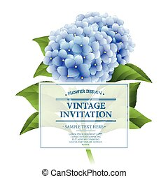 uitnodiging, card., blauwe , hortensia, flowers., ouderwetse , floral, card., vector, illustratie