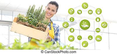 uitrustingen tuinierend, e-handel, iconen, glimlachende vrouw, met, houten doos, volle, van, specerij, keukenkruiden, op wit, achtergrond, lente, tuin, concept