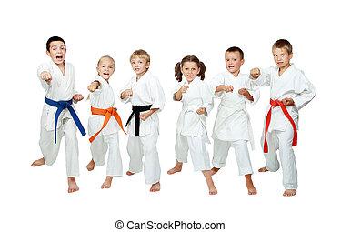 uitvoeren, karate, kinderen, techniek