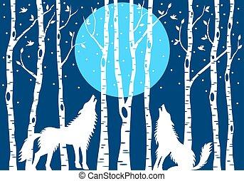 uive, lobo, com, árvores vidoeiro, vetorial