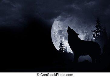 uive, lobo, fundo