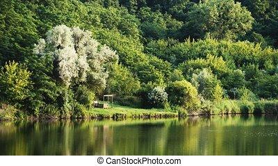 ukraine, central, forêt, lac