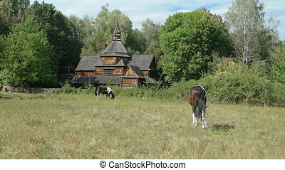 ukraine, chevaux, pré, -, architecture traditionnelle, fond, pâturage