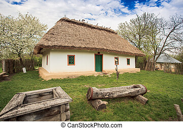 Ukraine house 19th century - typical national home in...