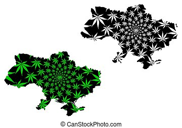 Ukraine - map is designed cannabis leaf
