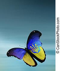 Ukrainian flag butterfly flying on sky background