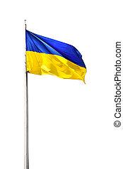 ukrainian flag - ukrainian national flag isolated on a white...