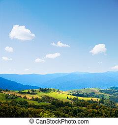 Ukrainian landscape.