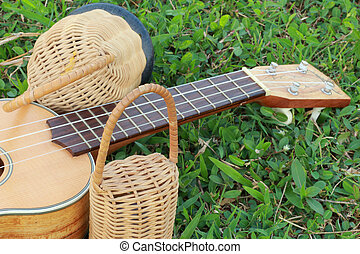 Ukulele with percussion.