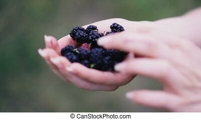 ulberry. Hands holding mulberry berry