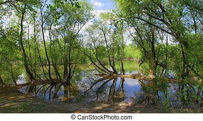 Ultra wide landscape, the lake Bundek in Zagreb - Ultra wide...