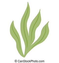 Ulva seaweed isolated on white background. Decorative symbol marine algae green color. Sketch in style doodle.