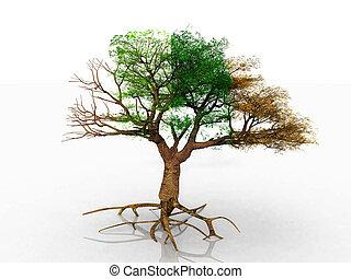 um, árvore, com, quatro estações