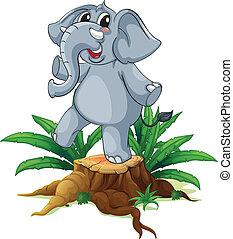 um, árvore, com, um, jovem, cinzento, elefante