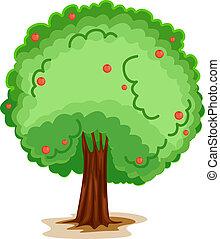 um, árvore