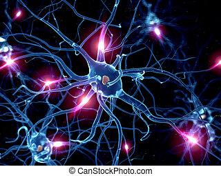 um, ativo, nervo, célula