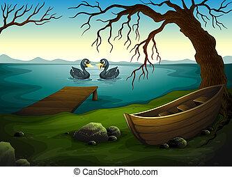 um, bote, sob, a, árvore, perto, a, mar, com, dois, patos