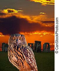 um, coruja, e, a, mistério, stonehenge