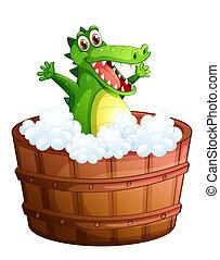 um, crocodilo, fazendo exame um banho