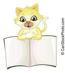 um, cute, gato amarelo, abertura, um, vazio, livro