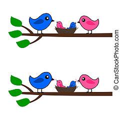 um, família, de, pássaros