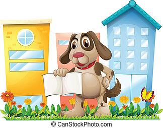 um, filhote cachorro, segurando, um, vazio, livro, perto, a, alto, edifícios