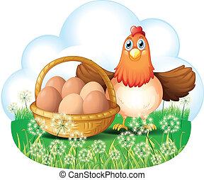 um, galinha, com, ovos, em, um, cesta