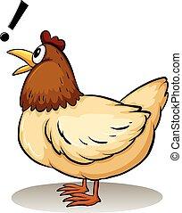 um, galinha