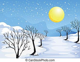 um, inverno, estação