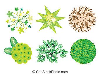 um, isometric, jogo, de, árvores, e, plantas