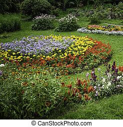 um, jardim, cheio, de, flores