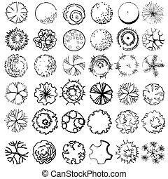 um, jogo, de, copa árvore, símbolos